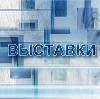 Выставки в Бегичевском